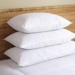 egyptian-cotton-pillow